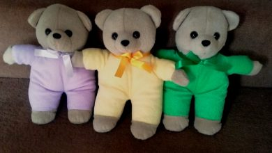 Photo of Teddies for Loving Care