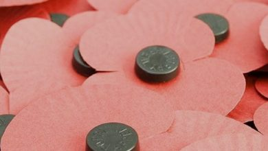Photo of Clevedon Hub – Lunch in November – Poppy lunch on the 11th